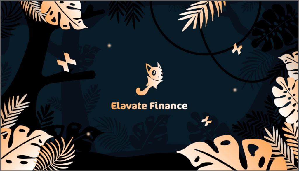 Elastos 生态项目 Elavate Finance DEX 发展与规划